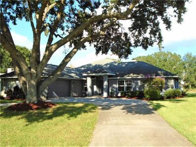 28724 Tammi Drive, Tavares, FL 32778 - MLS#: G5007482