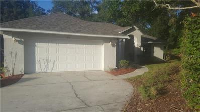 613 Huron Place, Mount Dora, FL 32757 - MLS#: G5007933