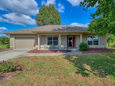 17228 SE 115TH Terrace Road, Summerfield, FL 34491 - MLS#: G5008137