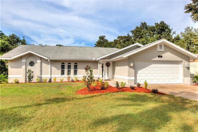 22 Palm Drive, Yalaha, FL 34797 - MLS#: G5008273