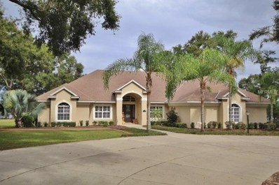 816 Hawk Landing, Fruitland Park, FL 34731 - MLS#: G5008312