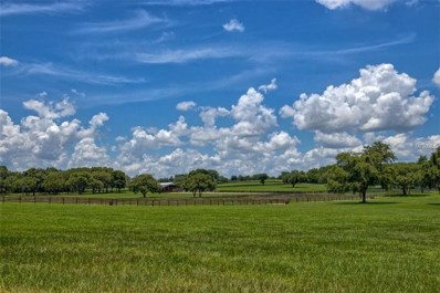 2221 Marion County Road, Weirsdale, FL 32195 - MLS#: G5008556