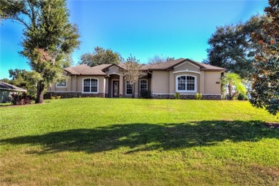 27432 Hammock View Court, Yalaha, FL 34797 - MLS#: G5009098