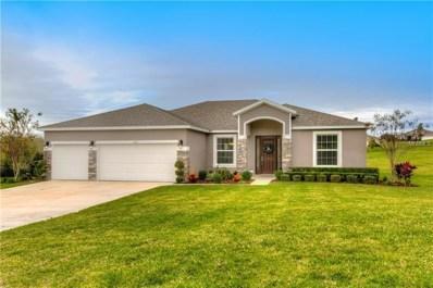 31311 Sunny Meadow Court, Leesburg, FL 34748 - MLS#: G5009431