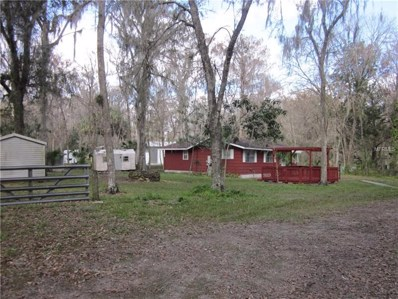 2550 Cr 412, Lake Panasoffkee, FL 33538 - #: G5011087