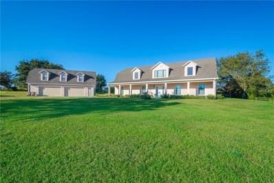 15911 Johns Lake Rd, Clermont, FL 34711 - #: G5011251