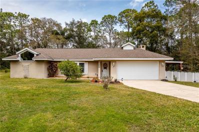 143 Timber Lane, Eustis, FL 32726 - #: G5011729