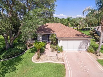 8997 SE 178TH Muirfield Place, The Villages, FL 32162 - MLS#: G5011796