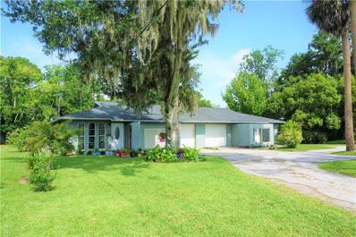 615 N Sinclair Avenue, Tavares, FL 32778 - #: G5017313