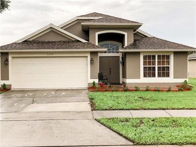 11254 Moonshine Creek Circle, Orlando, FL 32825 - MLS#: G5018397