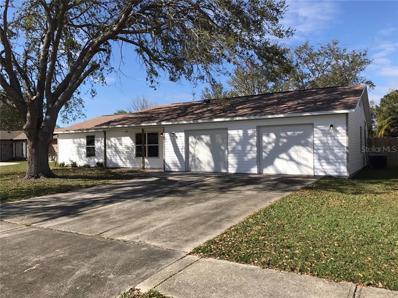 1233 Franklin Drive, Port Orange, FL 32129 - #: G5019575