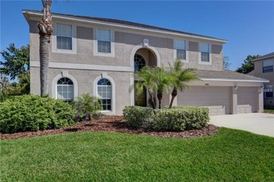 21553 Cormorant Cove Drive, Land O Lakes, FL 34637 - MLS#: H2400024
