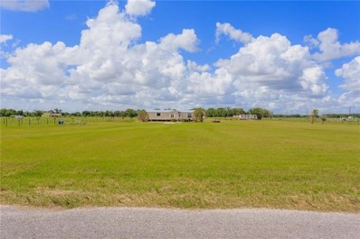 15608 Alderman Turner Road, Wimauma, FL 33598 - MLS#: H2400196