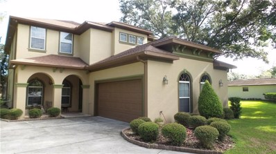 29239 Citrus Trace Way, Wesley Chapel, FL 33545 - MLS#: H2400722
