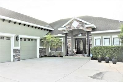 3053 Flat Rock Place, Land O Lakes, FL 34639 - MLS#: H2400753