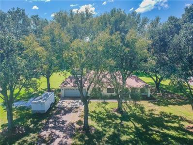 17150 Driftwood Lane, Lutz, FL 33558 - MLS#: H2400850