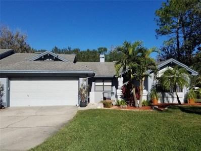 230 Pinewinds Boulevard, Oldsmar, FL 34677 - MLS#: J801404