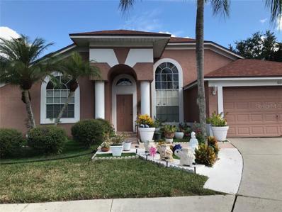 18005 Palm Breeze Drive, Tampa, FL 33647 - MLS#: J900425