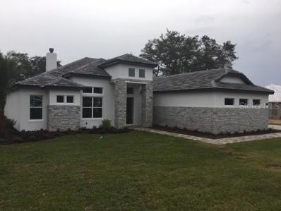25608 High Hampton Circle, Sorrento, FL 32776 - MLS#: J900693