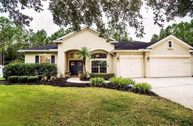 3256 Wandering Oaks Drive, Orange Park, FL 32065 - MLS#: J901419