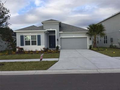 17634 Bright Wheat Drive, Lithia, FL 33547 - MLS#: J901915
