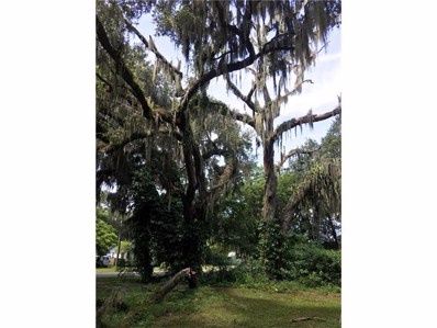 Orange Avenue N, Fort Meade, FL 33841 - MLS#: L4722113