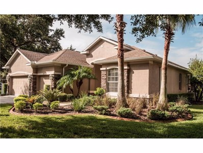 2417 Blue Stone Court, Valrico, FL 33594 - MLS#: L4723196