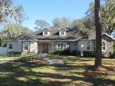 2102 Oak Hill Drive, Valrico, FL 33594 - MLS#: L4723295