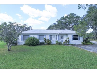 11015 County Road 39, Lithia, FL 33547 - MLS#: L4724079