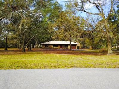 1230 Itchepackesassa Drive, Lakeland, FL 33810 - MLS#: L4725335