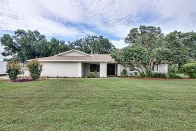 1811 Pinnacle Drive, Lakeland, FL 33813 - MLS#: L4901102