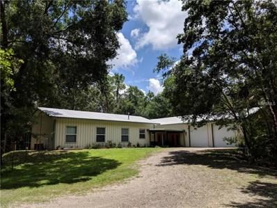 4485 Meadowood Drive, Mulberry, FL 33860 - MLS#: L4901466