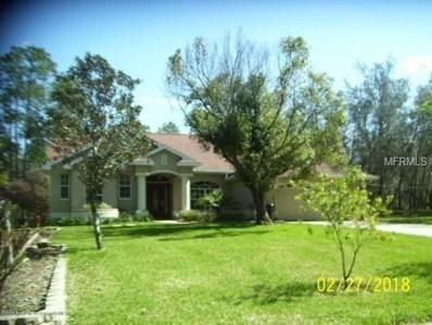 9223 Long Lake Avenue, Weeki Wachee, FL 34613 - MLS#: L4902570
