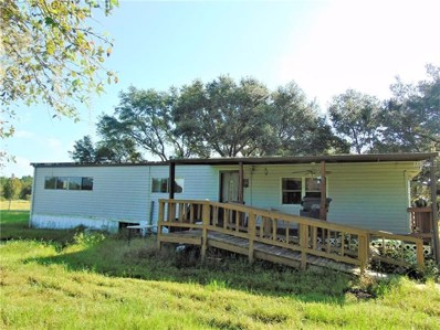 1405 Walker Road, Lakeland, FL 33810 - MLS#: L4903648