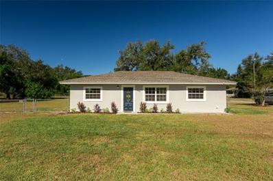 405 S 3RD Street, Eagle Lake, FL 33839 - MLS#: L4904250