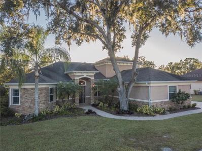 650 Christina Lake Drive, Lakeland, FL 33813 - #: L4904266