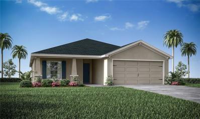 307 Woods Landing Drive, Lady Lake, FL 32159 - MLS#: L4904374