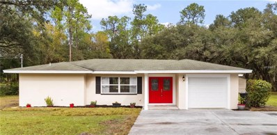 1633 Itchepackesassa Drive, Lakeland, FL 33810 - MLS#: L4904885