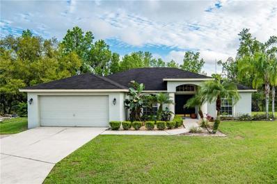 6257 Napa Dr, Lakeland, FL 33813 - MLS#: L4906730