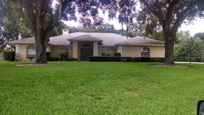 351 Howard Avenue, Lakeland, FL 33815 - #: L4907067