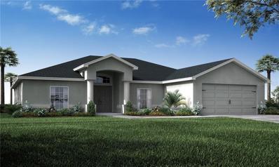 3698 Peregrine Way, Lakeland, FL 33811 - MLS#: L4907618
