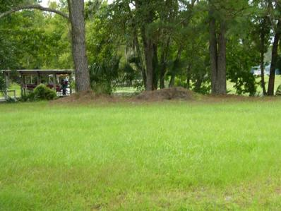 1609 Yellow Brick Road, Astor, FL 32102 - MLS#: O5393871