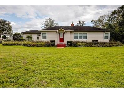 317 E Crystal Drive, Sanford, FL 32773 - MLS#: O5493514