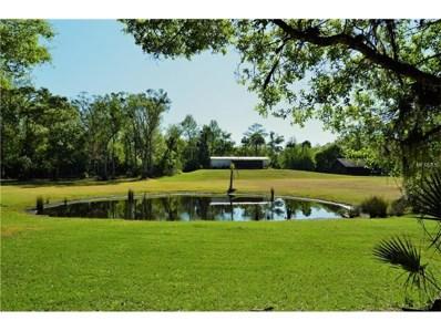 1501 Ashby Creek Road, Osteen, FL 32764 - MLS#: O5499256