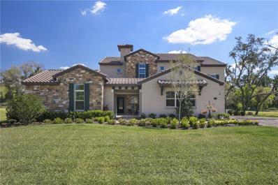 10013 Serene Waters Court, Orlando, FL 32836 - MLS#: O5501149