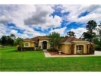 20529 Quinn Street, Orlando, FL 32833 - MLS#: O5519144