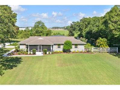 2940 Windsong Lane, Saint Cloud, FL 34772 - MLS#: O5524381
