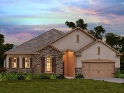 4723 Butler National Drive, Wesley Chapel, FL 33543 - MLS#: O5528430