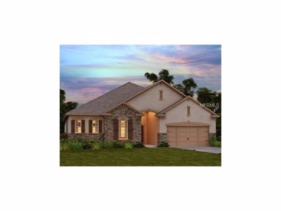 30100 Blue Mound Court, Wesley Chapel, FL 33543 - MLS#: O5528481