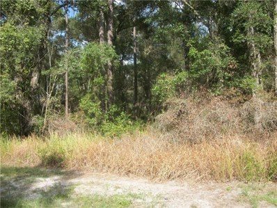 S Blue Lake Avenue, Deland, FL 32724 - MLS#: O5533784